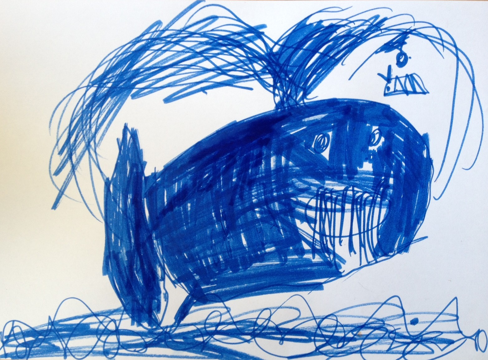 'A humpback whale spraying out water' by Frances Williams, Age 6.