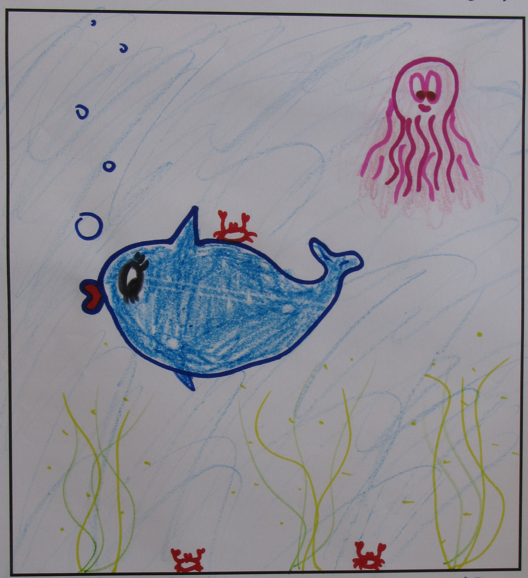 'Fabulicious Whale' by Ashlee Drummy, Age 13.